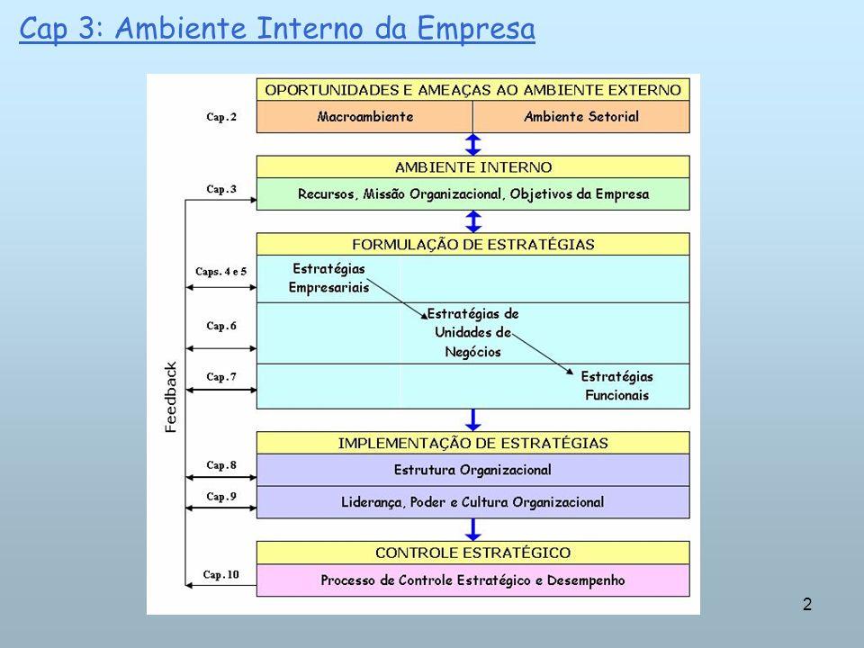 13 Cap 3: Ambiente Interno da Empresa => Vantagem competitiva sustentada que não pode ser plenamente copiada pelos concorrentes => retornos financeiros.