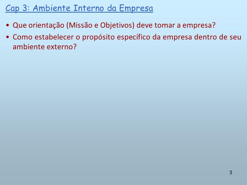 14 Cap 3: Ambiente Interno da Empresa Missão – trata-se do motivo da existência da organização.