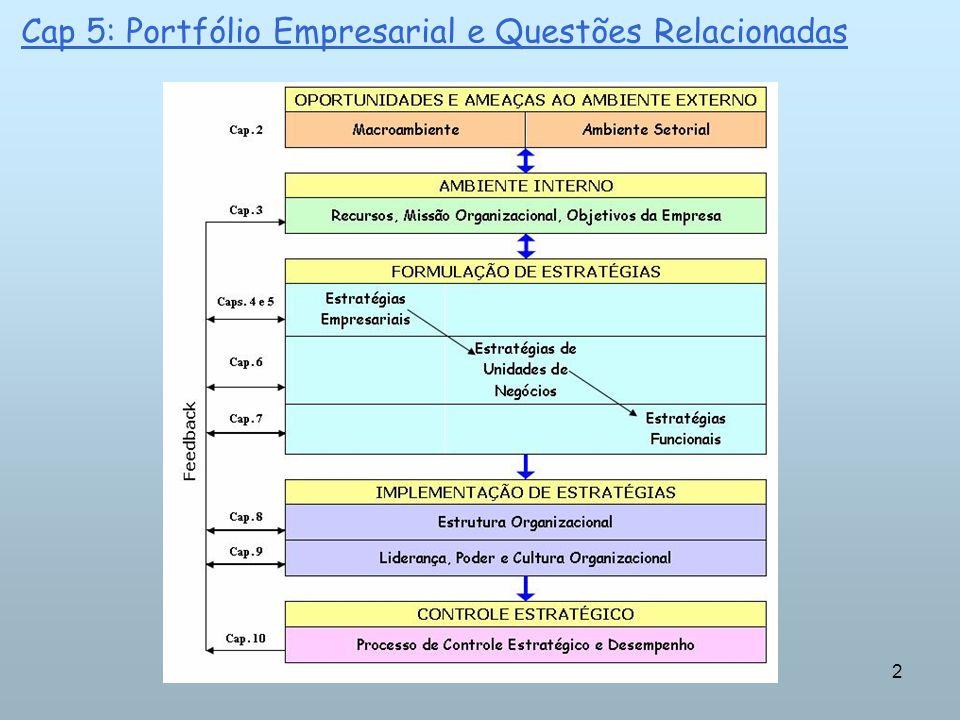 2 Cap 5: Portfólio Empresarial e Questões Relacionadas
