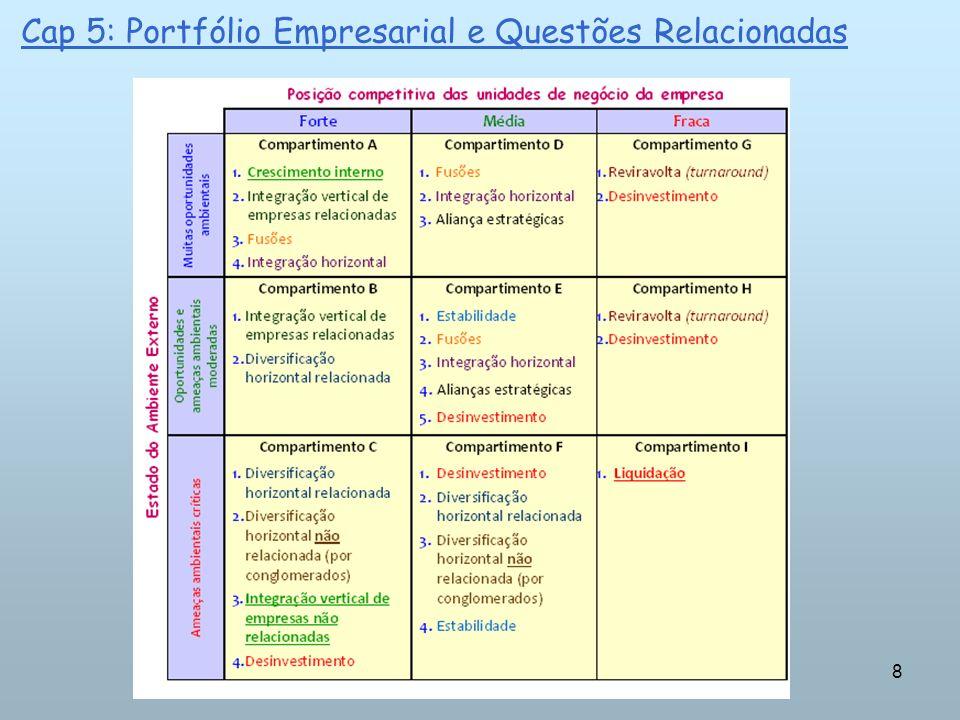 8 Cap 5: Portfólio Empresarial e Questões Relacionadas