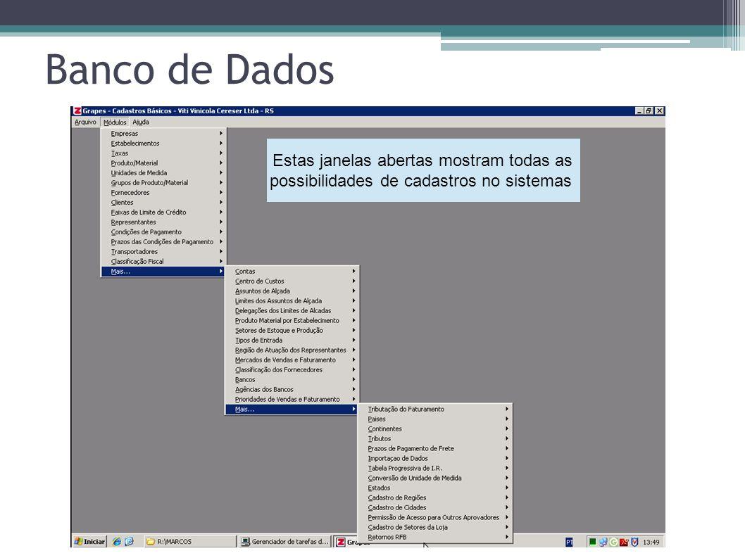 Banco de Dados Estas janelas abertas mostram todas as possibilidades de cadastros no sistemas