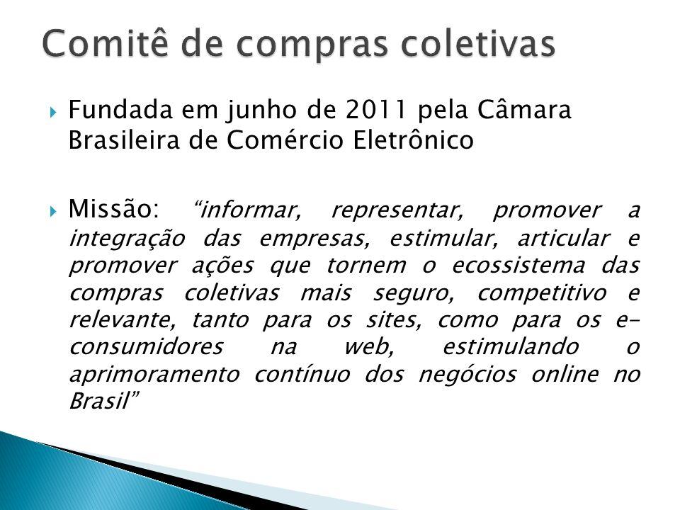 Fundada em junho de 2011 pela Câmara Brasileira de Comércio Eletrônico Missão: informar, representar, promover a integração das empresas, estimular, a