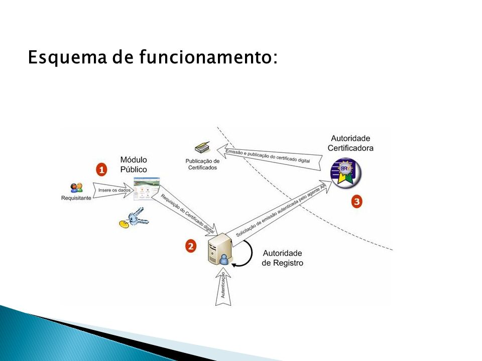 Na ICP-Brasil estão previstos oito tipos de certificado.