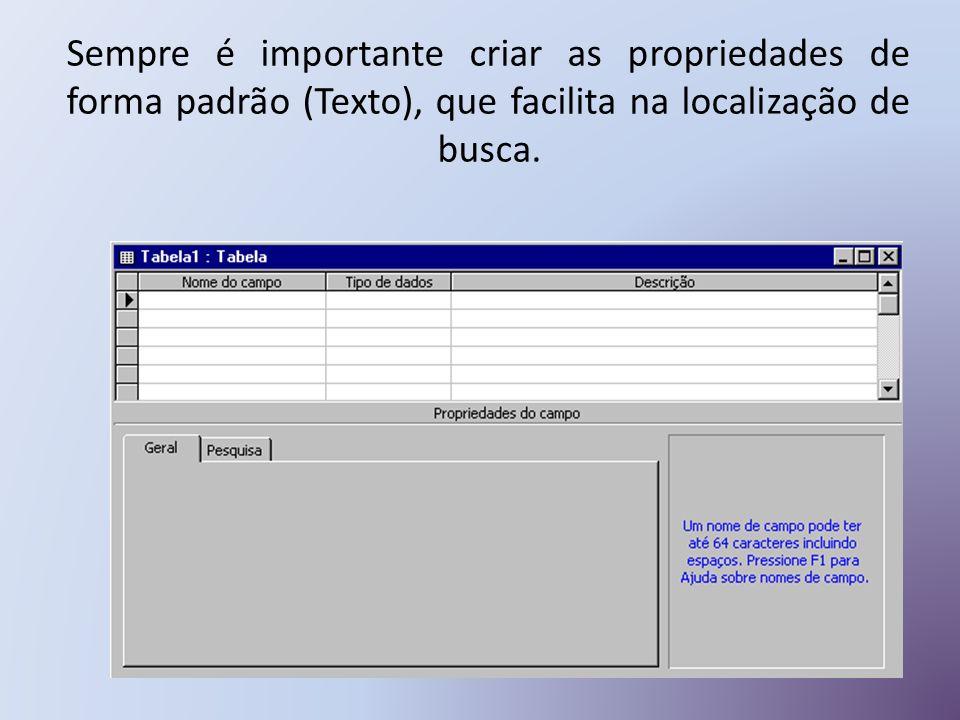 Sempre é importante criar as propriedades de forma padrão (Texto), que facilita na localização de busca.