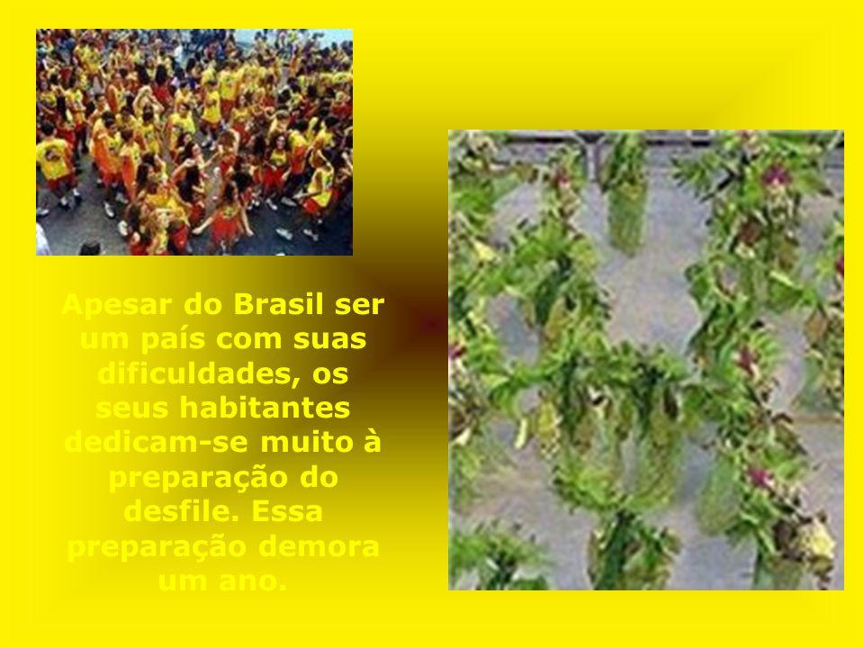 Apesar do Brasil ser um país com suas dificuldades, os seus habitantes dedicam-se muito à preparação do desfile. Essa preparação demora um ano.