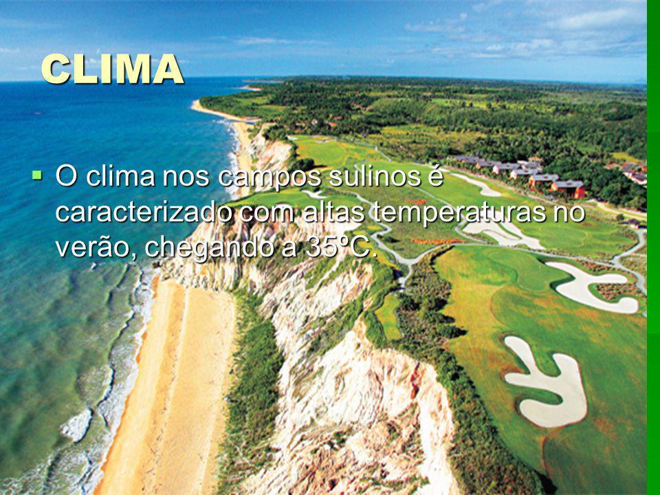 CLIMA O clima nos campos sulinos é caracterizado com altas temperaturas no verão, chegando a 35ºC. O clima nos campos sulinos é caracterizado com alta