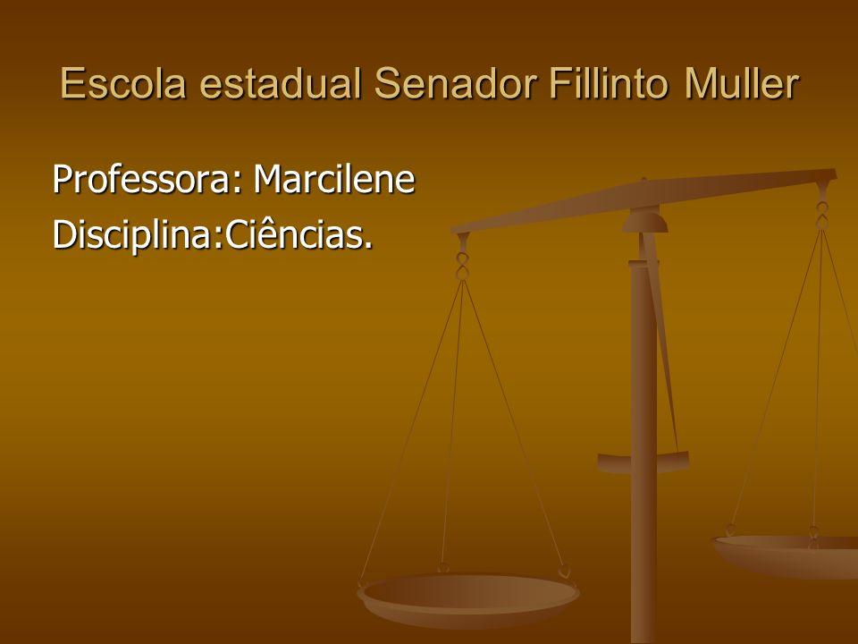 Escola estadual Senador Fillinto Muller Professora: Marcilene Disciplina:Ciências.
