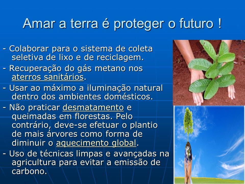 Amar a terra é proteger o futuro ! - Colaborar para o sistema de coleta seletiva de lixo e de reciclagem. - Recuperação do gás metano nos aterros sani