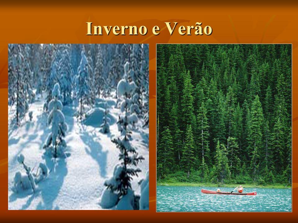 Inverno e Verão