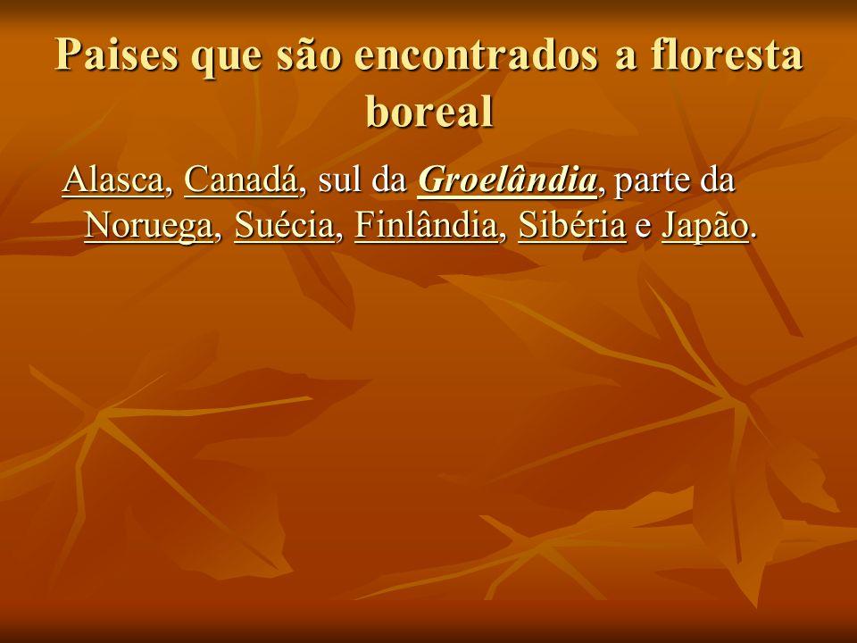 Paises que são encontrados a floresta boreal Alasca, Canadá, sul da Groelândia, parte da Noruega, Suécia, Finlândia, Sibéria e Japão. Alasca, Canadá,