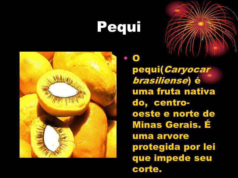 Pequi O pequi(Caryocar brasiliense) é uma fruta nativa do, centro- oeste e norte de Minas Gerais. É uma arvore protegida por lei que impede seu corte.