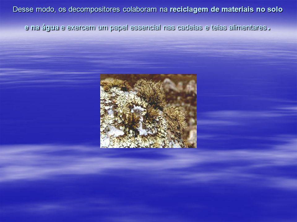 Trabalho Realizado pelos alunos: Bruno e Angela Profª Rosimeire Sorano Profª Rosimeire Sorano