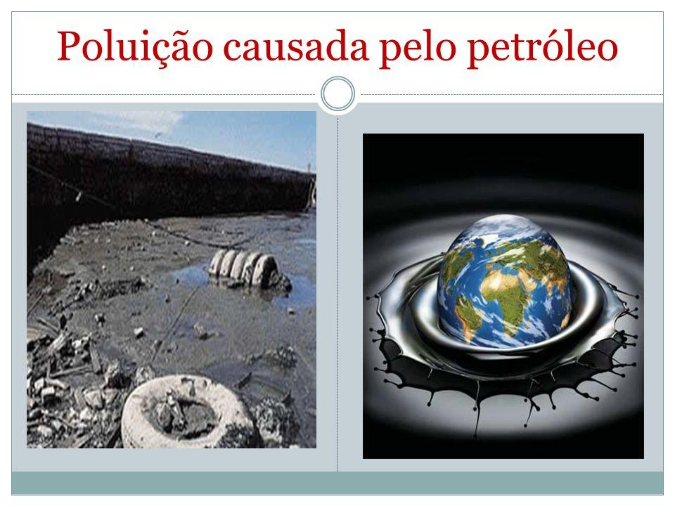 Poluição causada pelo petróleo