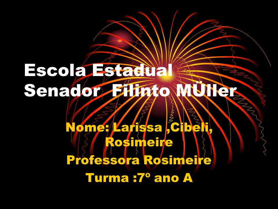 Escola Estadual Senador Filinto MÜller Nome: Larissa,Cibeli, Rosimeire Professora Rosimeire Turma :7º ano A
