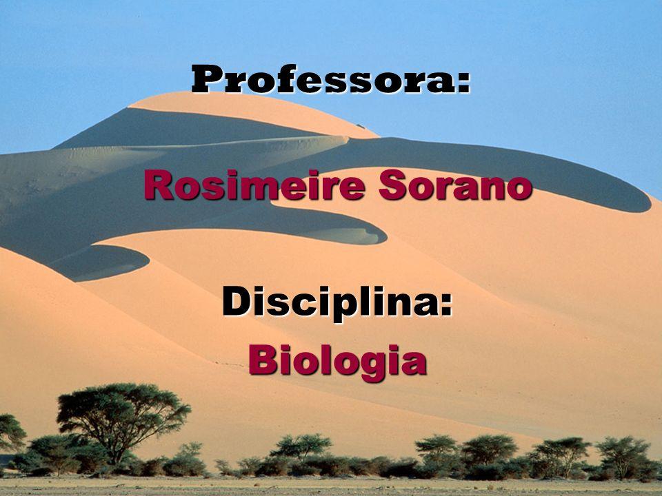 Professora: Rosimeire Sorano Disciplina:Biologia