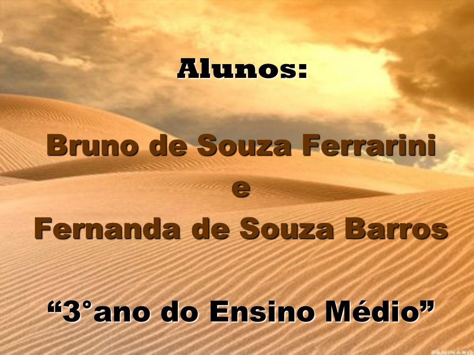 Alunos: Bruno de Souza Ferrarini e Fernanda de Souza Barros 3°ano do Ensino Médio