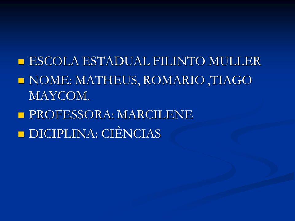 ESCOLA ESTADUAL FILINTO MULLER ESCOLA ESTADUAL FILINTO MULLER NOME: MATHEUS, ROMARIO,TIAGO MAYCOM. NOME: MATHEUS, ROMARIO,TIAGO MAYCOM. PROFESSORA: MA