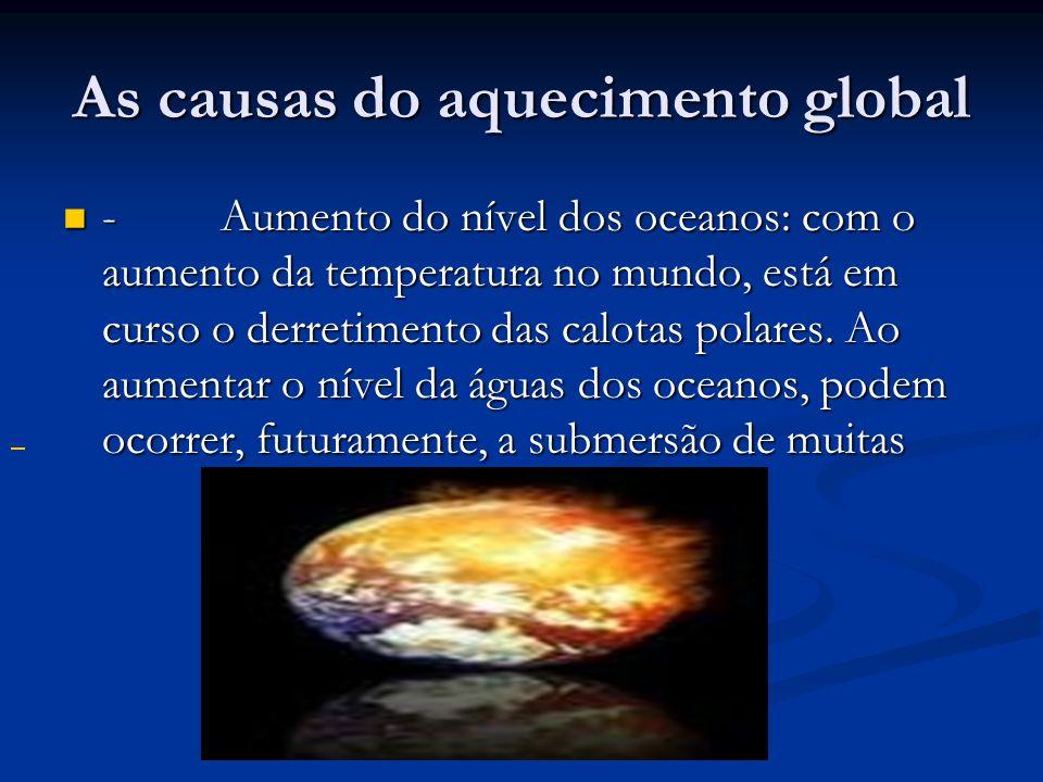 As causas do aquecimento global - Aumento do nível dos oceanos: com o aumento da temperatura no mundo, está em curso o derretimento das calotas polare