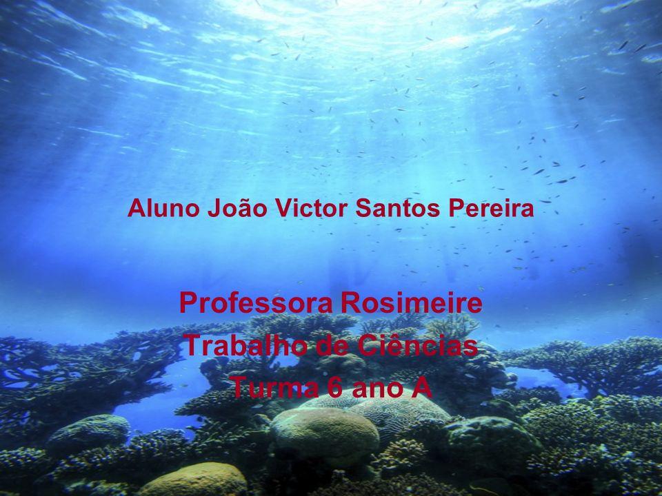 Aluno João Victor Santos Pereira Professora Rosimeire Trabalho de Ciências Turma 6 ano A