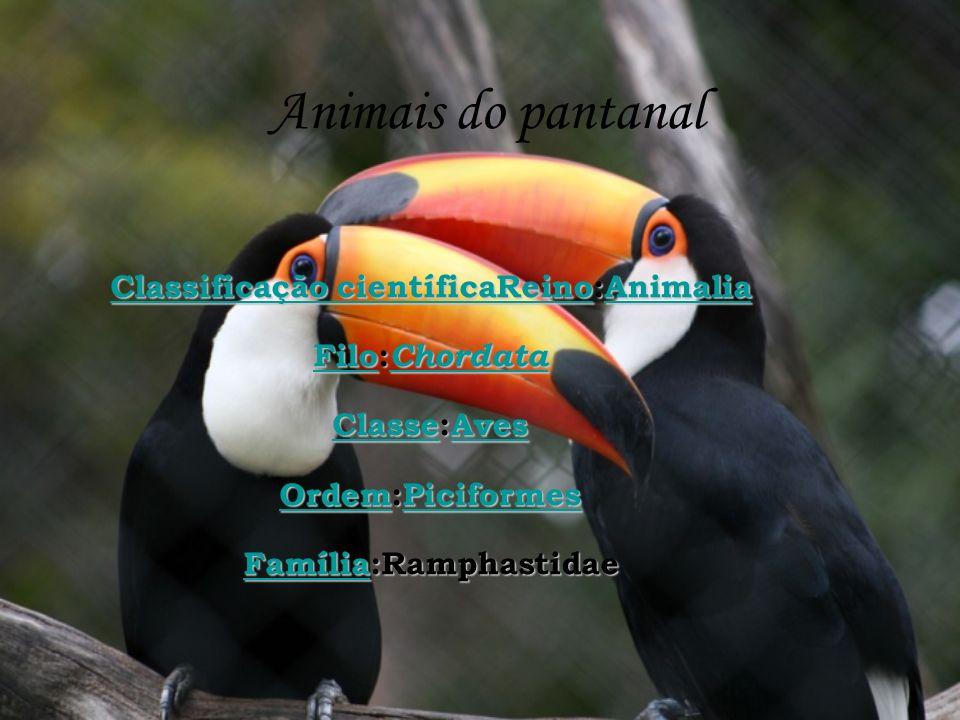 Animais do pantanal Classificação científicaReinoClassificação científicaReino:Animalia Animalia Classificação científicaReinoAnimalia FiloFilo: Chord