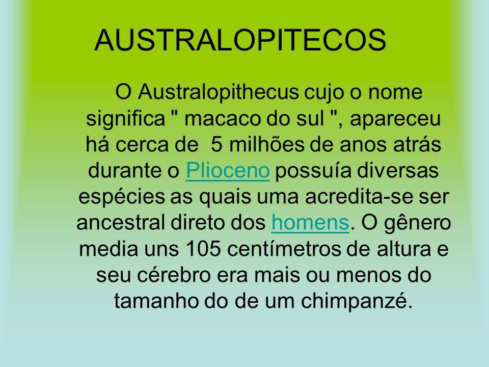 AUSTRALOPITECOS O Australopithecus cujo o nome significa macaco do sul , apareceu há cerca de 5 milhões de anos atrás durante o Plioceno possuía diversas espécies as quais uma acredita-se ser ancestral direto dos homens.