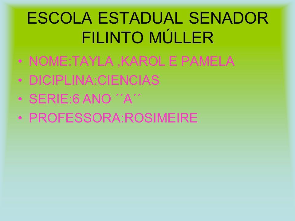 ESCOLA ESTADUAL SENADOR FILINTO MÚLLER NOME:TAYLA,KAROL E PAMELA DICIPLINA:CIENCIAS SERIE:6 ANO ´´A´´ PROFESSORA:ROSIMEIRE