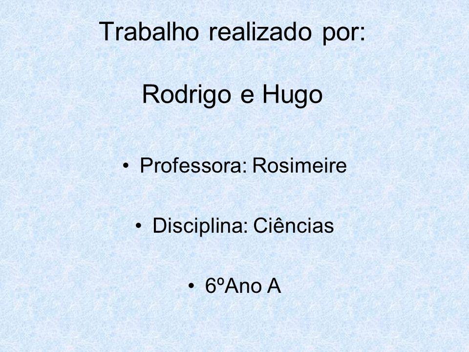 Trabalho realizado por: Rodrigo e Hugo Professora: Rosimeire Disciplina: Ciências 6ºAno A