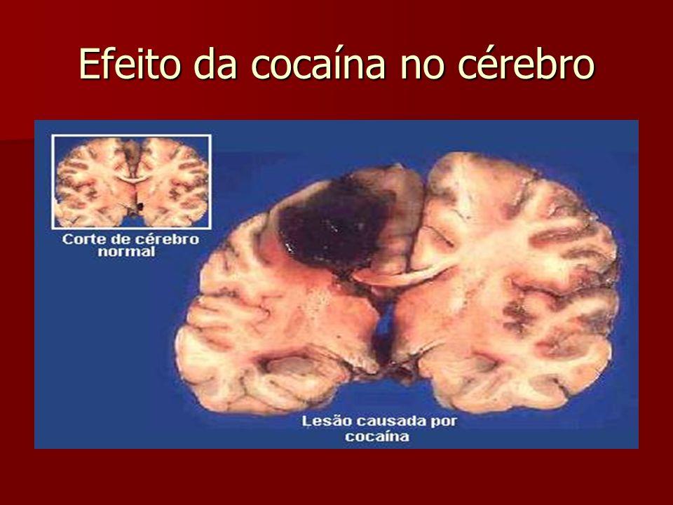 Efeito da cocaína no cérebro
