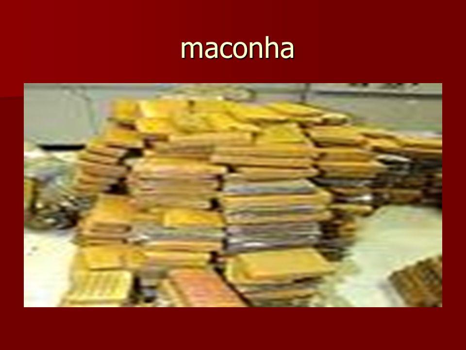 maconha maconha