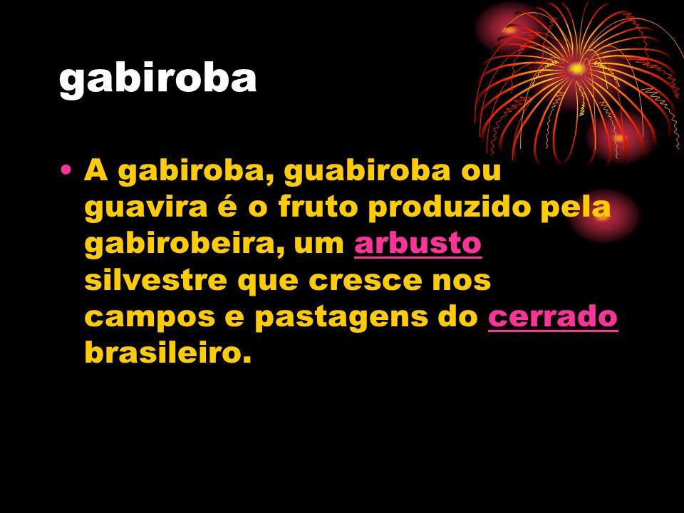 gabiroba A gabiroba, guabiroba ou guavira é o fruto produzido pela gabirobeira, um arbusto silvestre que cresce nos campos e pastagens do cerrado bras