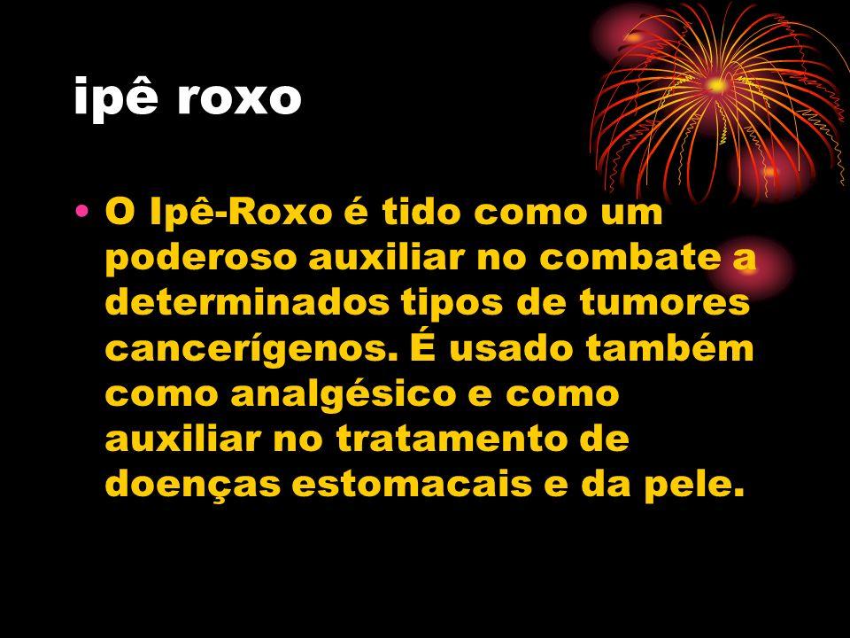 O Ipê-Roxo é tido como um poderoso auxiliar no combate a determinados tipos de tumores cancerígenos. É usado também como analgésico e como auxiliar no