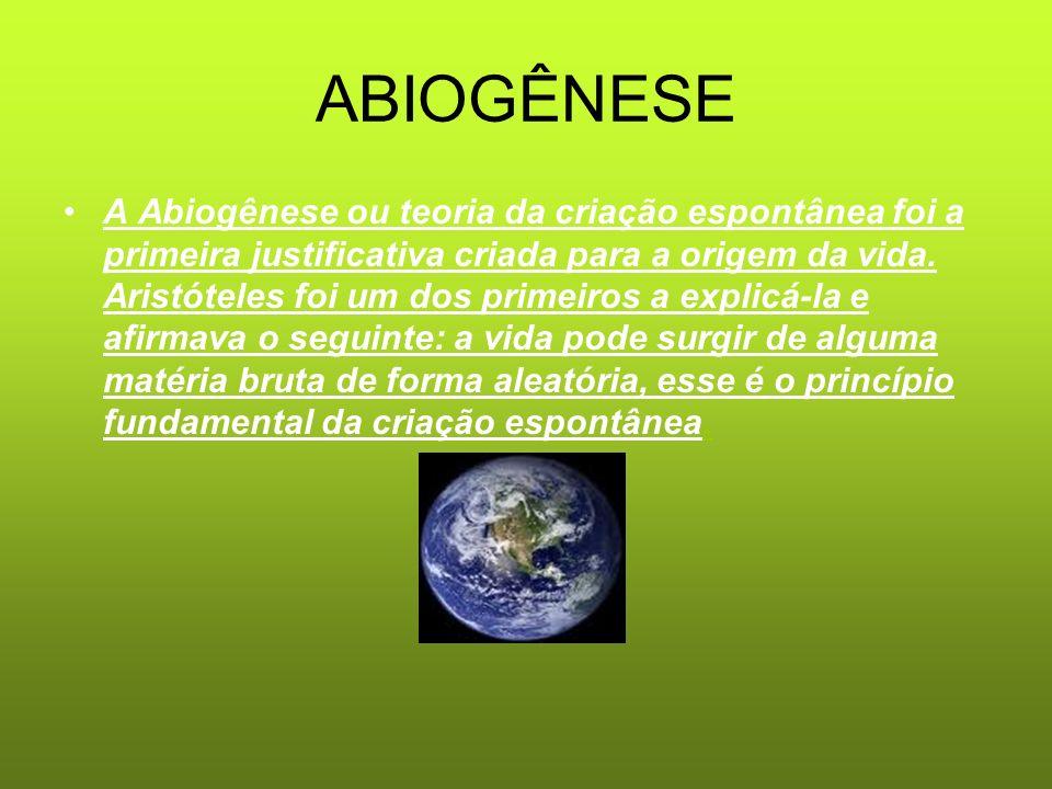 ABIOGÊNESE A Abiogênese ou teoria da criação espontânea foi a primeira justificativa criada para a origem da vida. Aristóteles foi um dos primeiros a