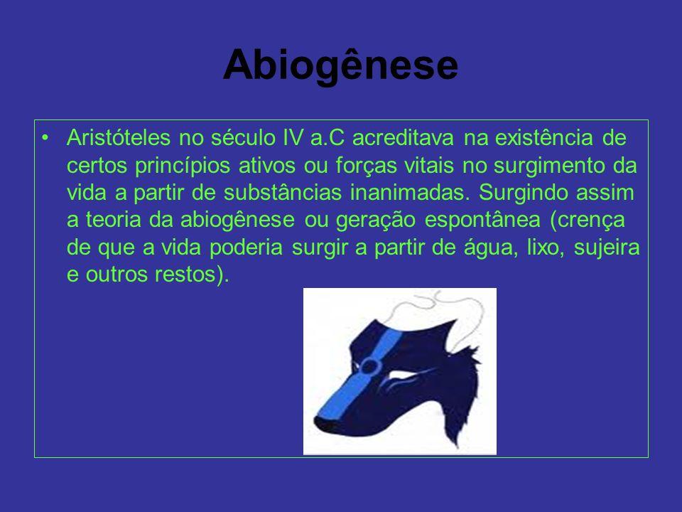 Abiogênese Aristóteles no século IV a.C acreditava na existência de certos princípios ativos ou forças vitais no surgimento da vida a partir de substâ