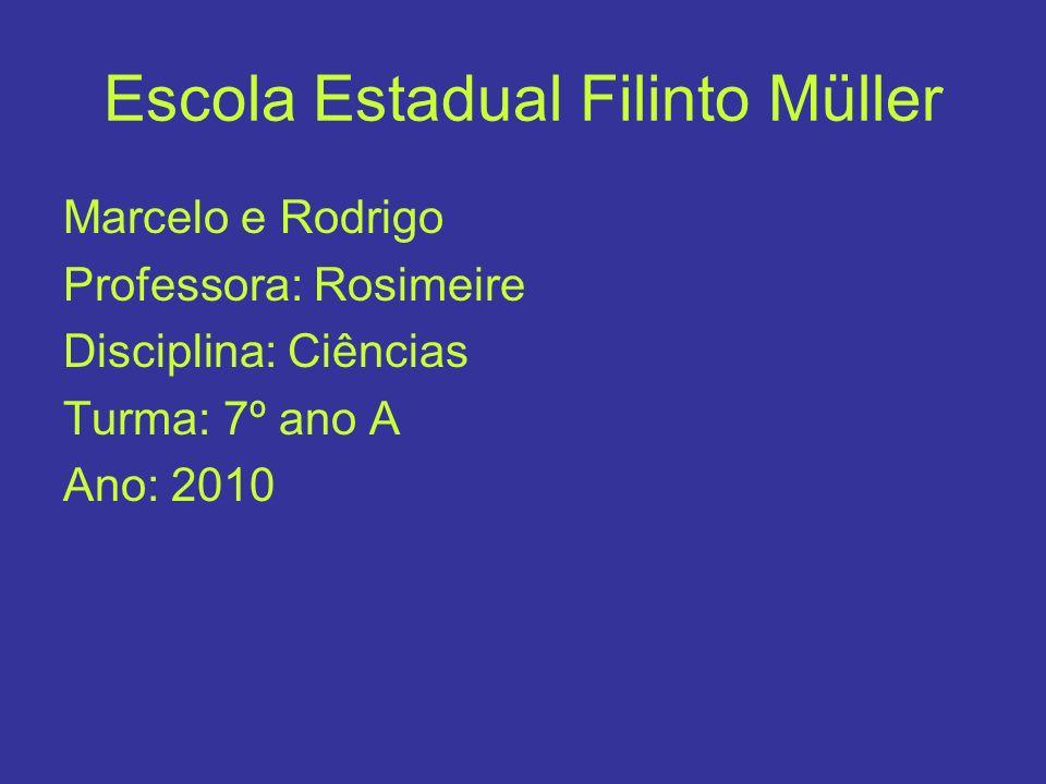 Escola Estadual Filinto Müller Marcelo e Rodrigo Professora: Rosimeire Disciplina: Ciências Turma: 7º ano A Ano: 2010