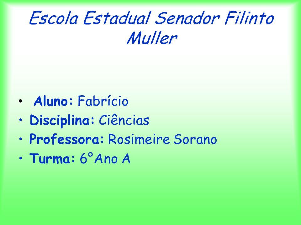 Escola Estadual Senador Filinto Muller Aluno: Fabrício Disciplina: Ciências Professora: Rosimeire Sorano Turma: 6°Ano A