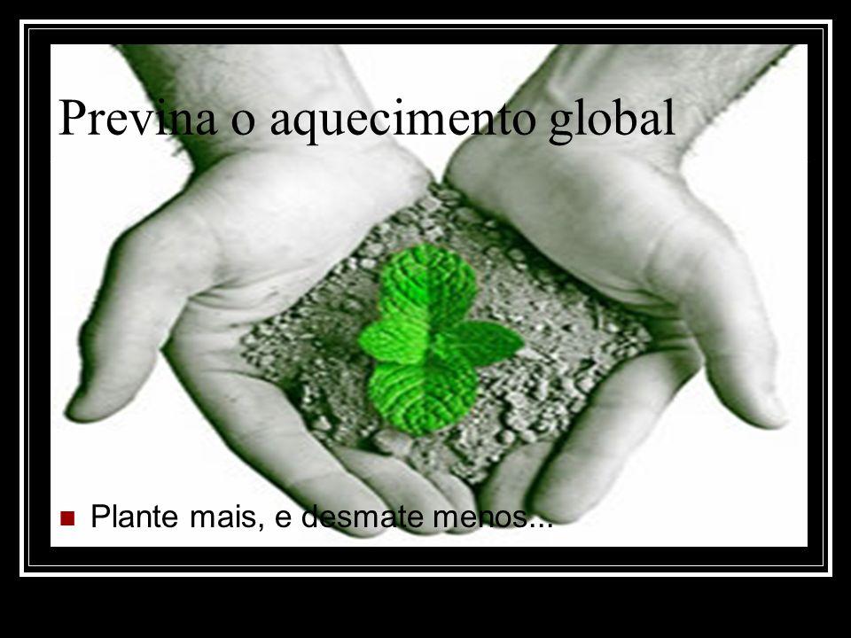 Previna o aquecimento global Plante mais, e desmate menos...