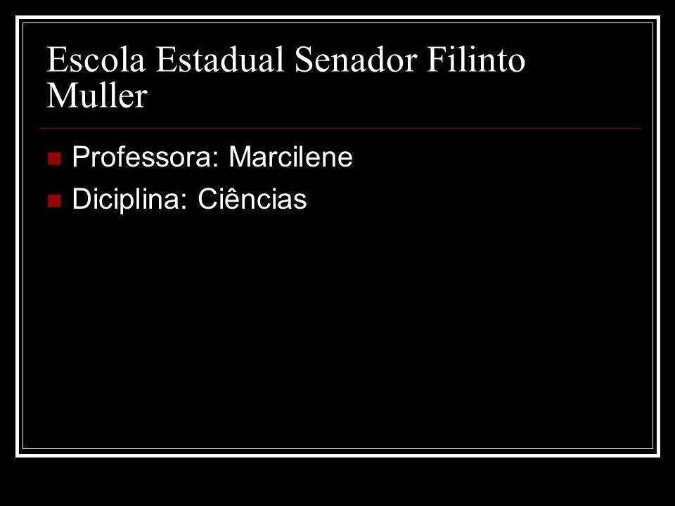 Escola Estadual Senador Filinto Muller Professora: Marcilene Diciplina: Ciências