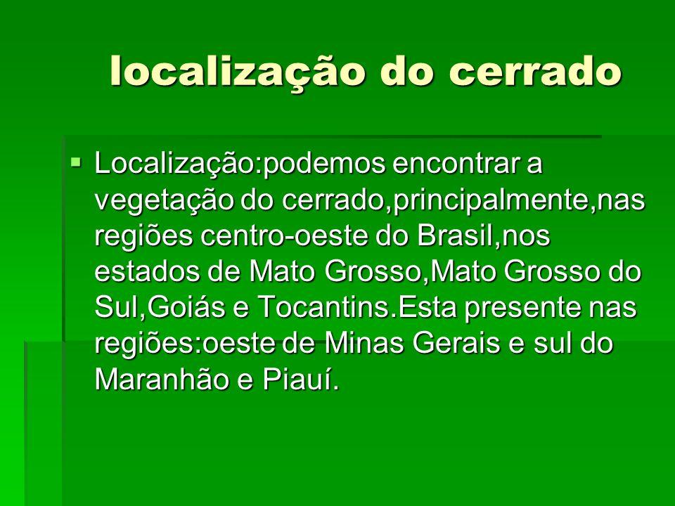 localização do cerrado localização do cerrado Localização:podemos encontrar a vegetação do cerrado,principalmente,nas regiões centro-oeste do Brasil,n