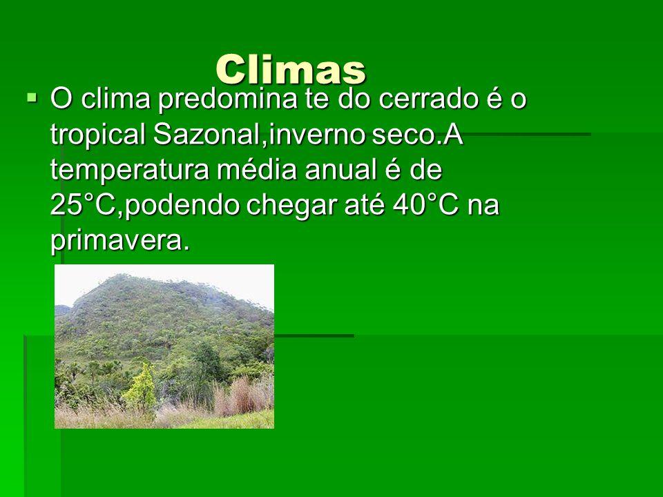 Climas Climas O clima predomina te do cerrado é o tropical Sazonal,inverno seco.A temperatura média anual é de 25°C,podendo chegar até 40°C na primave