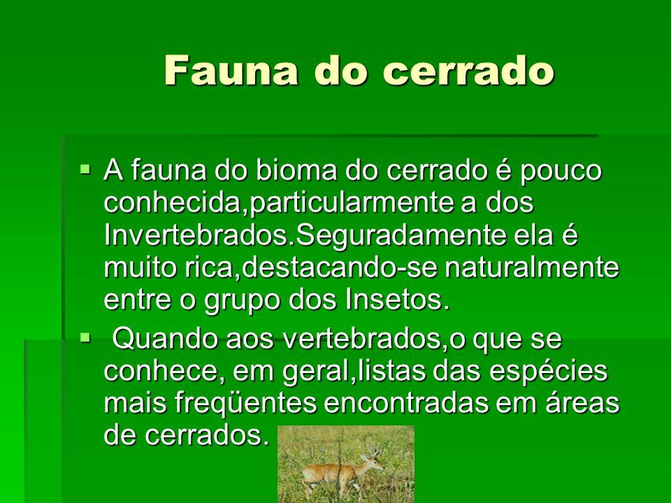 Fauna do cerrado Fauna do cerrado A fauna do bioma do cerrado é pouco conhecida,particularmente a dos Invertebrados.Seguradamente ela é muito rica,des