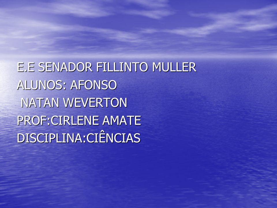 E.E SENADOR FILLINTO MULLER ALUNOS: AFONSO NATAN WEVERTON NATAN WEVERTON PROF:CIRLENE AMATE DISCIPLINA:CIÊNCIAS