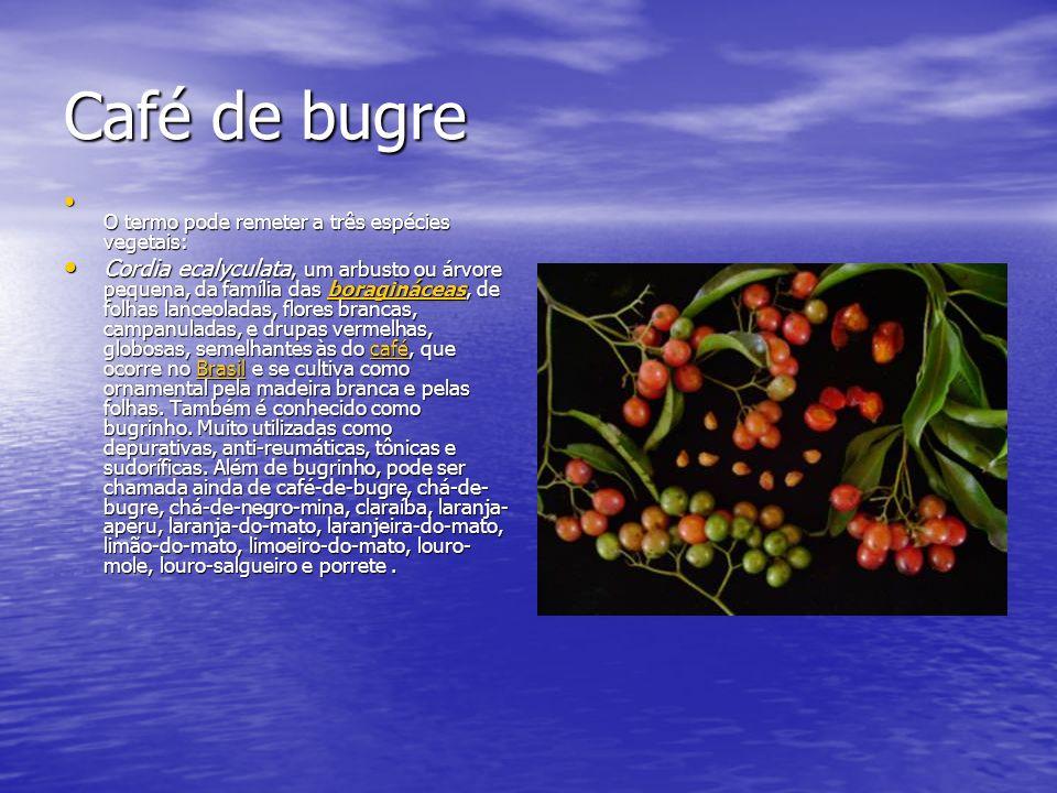 Café de bugre O termo pode remeter a três espécies vegetais: O termo pode remeter a três espécies vegetais: Cordia ecalyculata, um arbusto ou árvore p