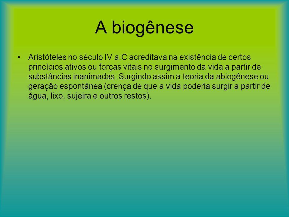 A biogênese Aristóteles no século IV a.C acreditava na existência de certos princípios ativos ou forças vitais no surgimento da vida a partir de subst