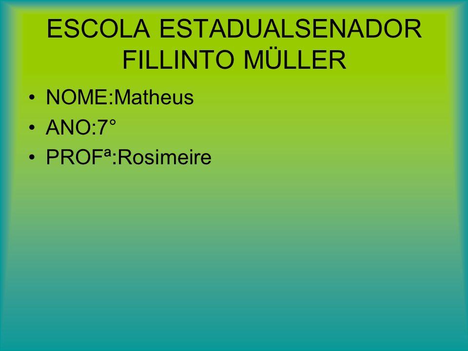 ESCOLA ESTADUALSENADOR FILLINTO MÜLLER NOME:Matheus ANO:7° PROFª:Rosimeire