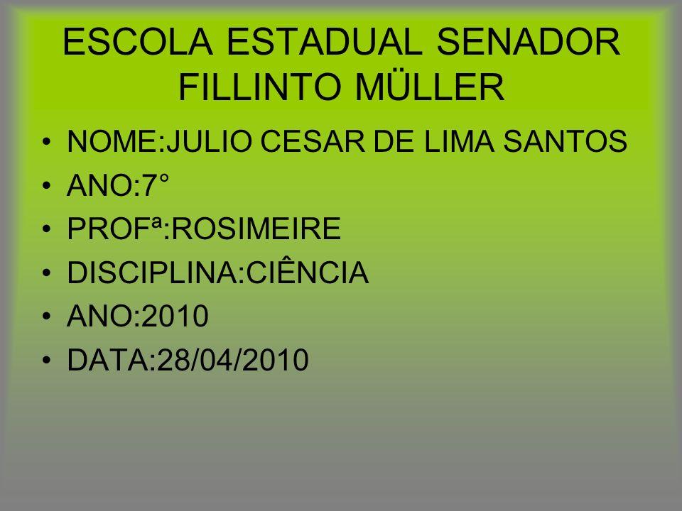 ESCOLA ESTADUAL SENADOR FILLINTO MÜLLER NOME:JULIO CESAR DE LIMA SANTOS ANO:7° PROFª:ROSIMEIRE DISCIPLINA:CIÊNCIA ANO:2010 DATA:28/04/2010