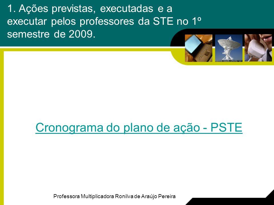 1. Ações previstas, executadas e a executar pelos professores da STE no 1º semestre de 2009.