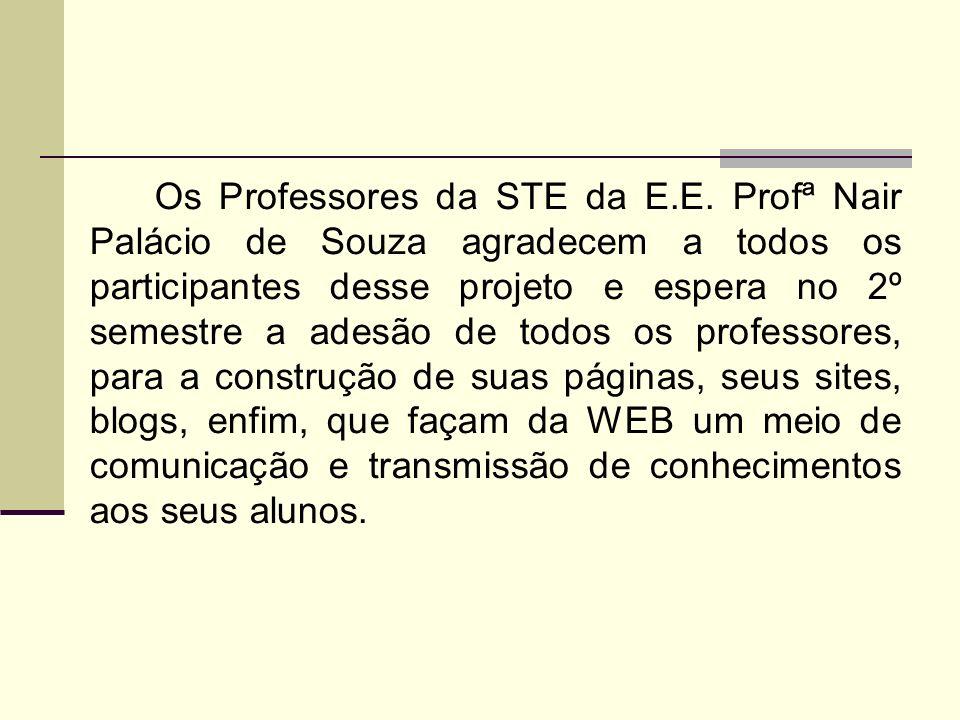 Os Professores da STE da E.E.