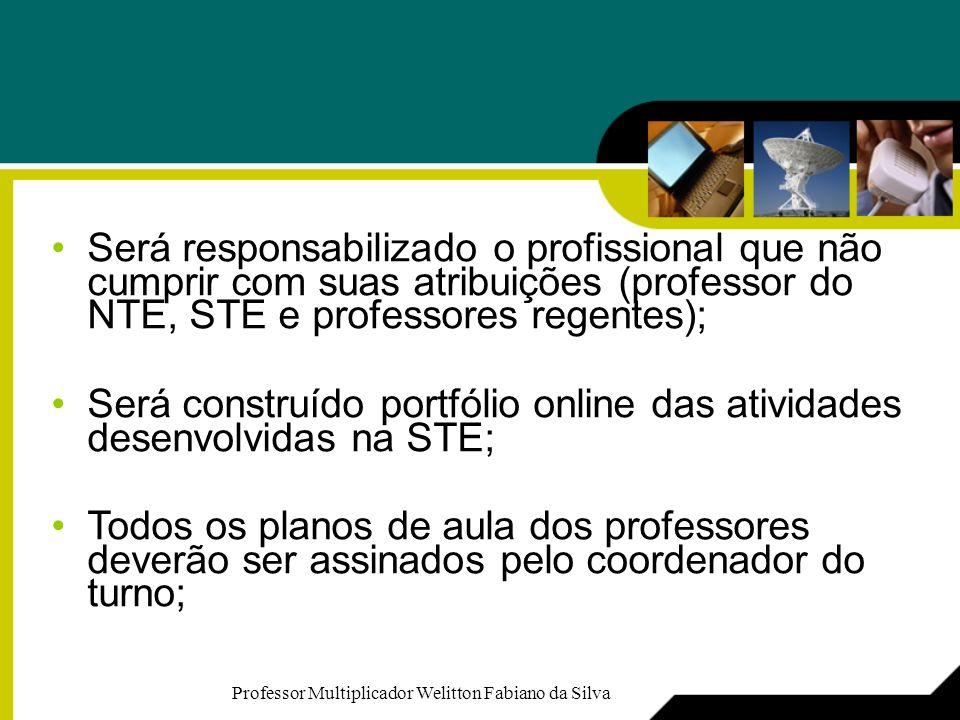 Será responsabilizado o profissional que não cumprir com suas atribuições (professor do NTE, STE e professores regentes); Será construído portfólio on