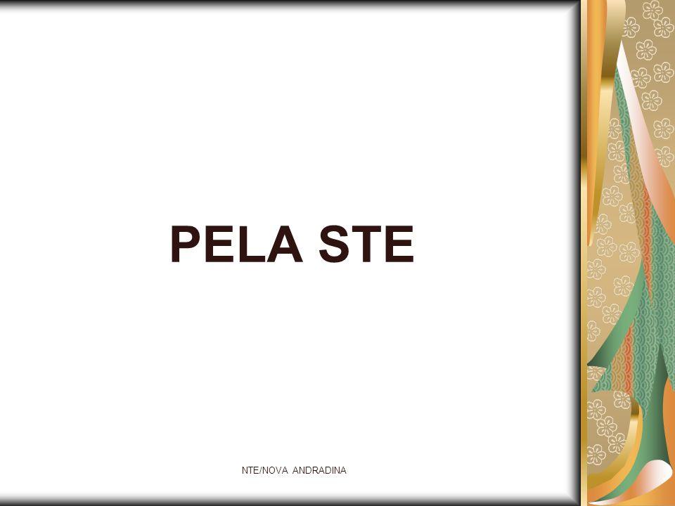 NTE/NOVA ANDRADINA PELA STE
