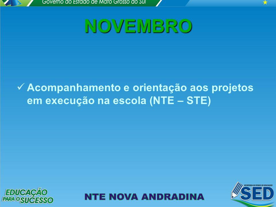 NOVEMBRO Acompanhamento e orientação aos projetos em execução na escola (NTE – STE)